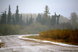 CANADA ALBERTA PEACE RIVER 9OCT09 - Deserted road during snowstorm in the Boreal forest east of Peace River in northern Alberta, Canada...Significant deposits of Bitumen, also known as tarsands have been found in the area around Peace River and Slave Lake, thus threatening the continued existence of flora and fauna of the Boreal through oil and gas developments...The Canadian boreal region represents a tract of land over 1,000 kilometres wide separating the tundra in the north and temperate rain forest and deciduous woodlands that predominate in the most southerly and westerly parts of Canada. ..The boreal region contains about 14% of Canada's population. With its sheer vastness and integrity, the boreal makes an important contribution to the rural and aboriginal economies of Canada, primarily through resource industries, recreation, hunting, fishing and eco-tourism...Photo by Jiri Rezac / GREENPEACE
