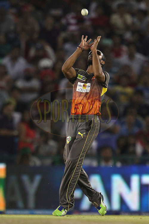 Shikhar Dhawan takes the catch to dismiss Piyush Chawla during match 59 of of the Pepsi Indian Premier League between The Kings XI Punjab and the Sunrisers Hyderabad held at the PCA Stadium, Mohal, India  on the 11th May 2013..Photo by Ron Gaunt-IPL-SPORTZPICS ..Use of this image is subject to the terms and conditions as outlined by the BCCI. These terms can be found by following this link:..http://www.sportzpics.co.za/image/I0000SoRagM2cIEc