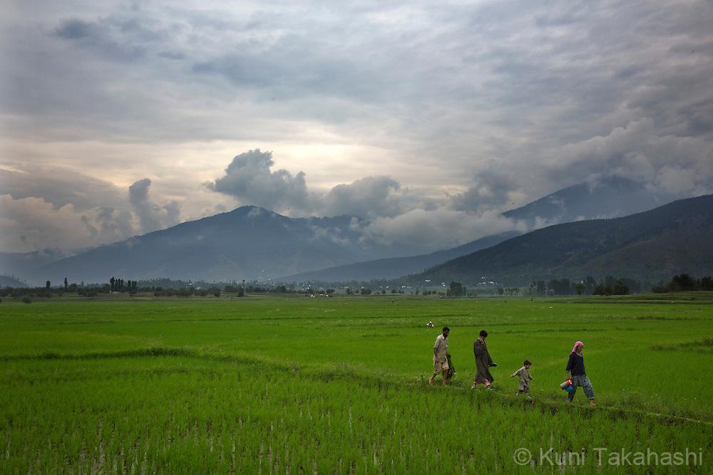 Lolab Valley region in Kashmir on June 27, 2013.<br /> Photo by Kuni Takahashi