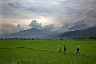 Lolab Valley region in Kashmir on June 27, 2013.<br /> Photo by Kuni Takahashi
