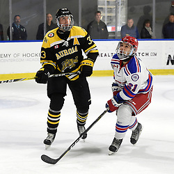 BUFFALO, NY - SEP 21,  2017: Ontario Junior Hockey League Governors Showcase game between the Aurora Tigers and Oakville Blades, James Thomson #33 of the Aurora Tigers and Thomas Maia #21 of the Oakville Blades follow the play during the second period.<br /> (Photo by Andy Corneau / OJHL Images)