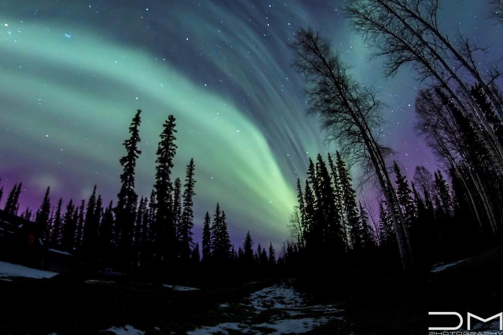 Northern Lighst over Fairbanks, Alaska.