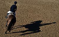 VEJER DE LA FRONTERA, CADIZ - MARCH 03: Sunshine Tour 2019 at Dehesa de Montenmedio on March 03, 2019 in Vejer de La Frontera, Spain. (Photo by Manuel Queimadelos / Oxer Sport)