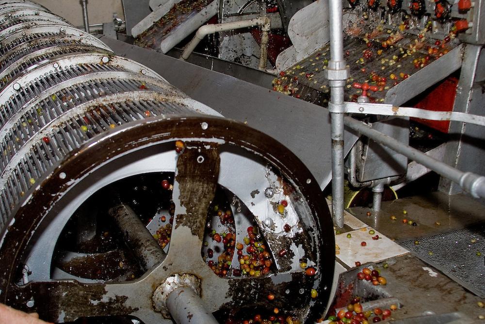 Coffee processing pant, Sierra Nevada de Santa Marta, Colombia