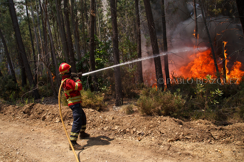 LEIRIA, PORTUGAL - JUNE 20:  A firefighter battles a fire after a wildfire took dozens of lives on June 20, 2017 in near Picha, in Leiria district, Portugal. On Saturday night, a forest fire became uncontrollable in the Leiria district, killing at least 62 people and leaving many injured. Some of the victims died inside their cars as they tried to flee the area.  (Photo by Pablo Blazquez Dominguez/Getty Images)