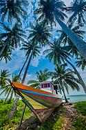 Indonesia Borneo Derawan Island Boat and Palm Trees