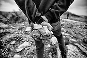 Rocks in the hands of a Palestinian demonstrator in Nabi Saleh. Dec. 7, 2013. West Bank, Palestine.