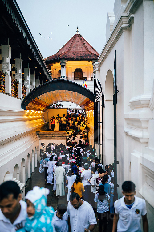 Crowds travel to the Temple of the Tooth on Poya Day, Kandy, Sri Lanka, Asia