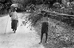 BANGLADESH RAMU JUL94 - A young boy hauls Bamboo in Ramu, southern Bangladesh...The Bangladesh Bureau of Statistics estimates the total working child population between 5 and 17 years old to be at 7.9 million...jre/Photo by Jiri Rezac..© Jiri Rezac 1994