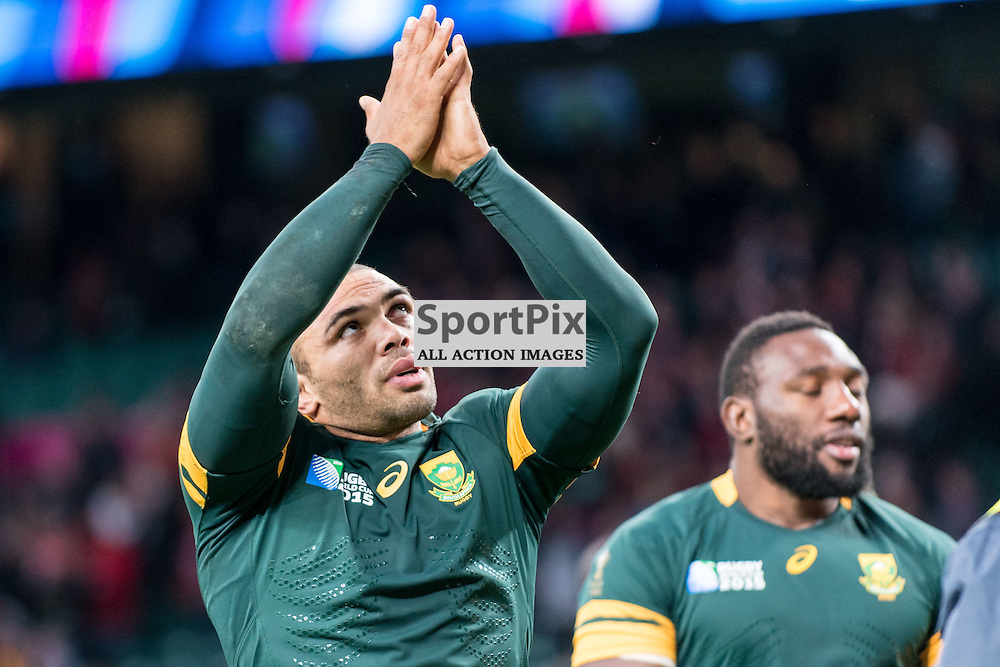 South Africa's Bryan Habana (a World Cup winner in 2007) celebrates his team qualifying for the semifinals. Action from the South Africa v Wales quarter final game at the 2015 Rugby World Cup at Twickenham in London, 17 October 2015. (c) Paul J Roberts / Sportpix.org.uk