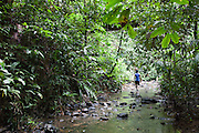 An Iban guide walks up a steam in the rainforest, Ulu Temburong National Park, Brunei