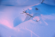 Abstract pattern of wind blown snow at sunset<br /> Birds Hill Provincial Park<br /> Manitoba<br /> Canada