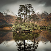 This beautiful wee Lochan in Glen Etive is situated a short drive from the more familiar pass of Glen Coe. It's an evocative location that encapsulates all the romantic notions of Scotland's Character. Reached by way of a crawl through a claustrophobic jungle of rhododendrons, this particular vantage point is right on the bank. From here the wonderful symmetry of the Buachailles', Etive Mor and Beag encompass the wonderful huddle of proud pines floating above the still water and the seasonal dusting of winter snow on the peaks, the icing on the cake.