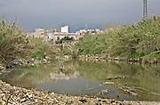 Palermo, la foce dell'Oreto, fiume che attraversava la citt&agrave;, ormai piena di liquami e spazzatura.<br /> Palermo, the mouth of the river Oreto, that runs through the city, full of sewage and garbage.