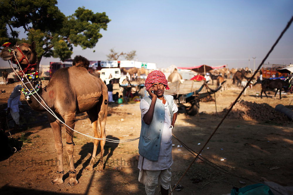 A camel owner negotiating over phone at the fair grounds in Pushkar, India, November 6, 2011.  Photographer: Prashanth Vishwanathan