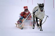 NR211 raindeer race in Sami country Norway, Course de rennes chez le peuple Sami de Norvege