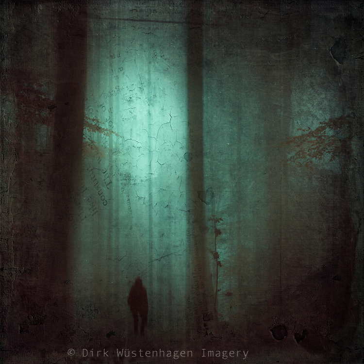 Spooky forest scenery with a solitary figure - manipulated photo<br /> Prints &amp; more:https://society6.com/product/schattenwelt_print#1=45<br /> or here:<br /> http://www.redbubble.com/people/dyrkwyst/works/16600316-schattenwelt?ref=recent-owner