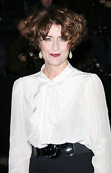 © Licensed to London News Pictures. Anna Chancellor attending the London Evening Standard Theatre Awards at the The Savoy Hotel in London, UK on 17 November 2013. Photo credit: Richard Goldschmidt/PiQtured/LNP