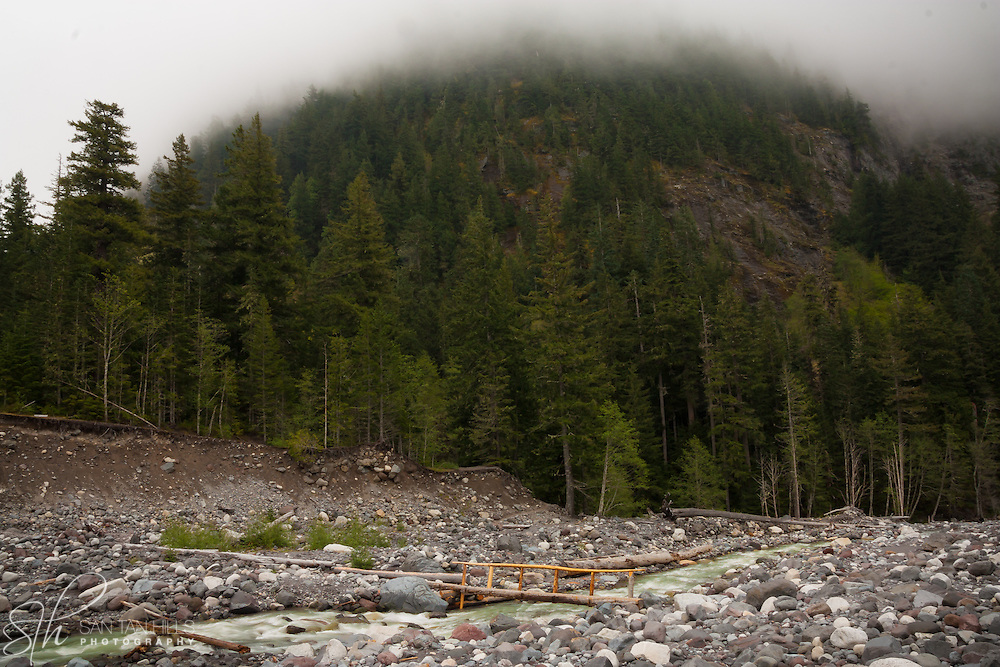 Nisqually River in the foreground - Mt. Rainier National Park, WA
