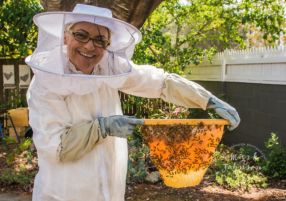 Woman bee keeper displaying her Top Bar beehive, Brisbane, Queensland, Australia