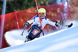 WAEFLER Micha, LW11, SUI, Slalom at the WPAS_2019 Alpine Skiing World Cup Finals, Morzine, France
