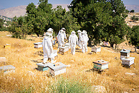 Yousef's beekeeping is part of several community sustainability projects supported by Amman-based Baraka Destinations.