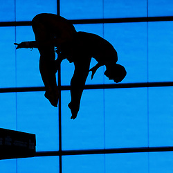 Fina NVC Diving World Series |  London | 1 May 2015