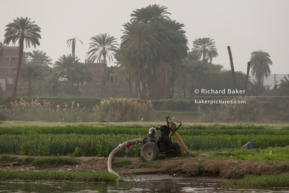 Water being pumped from the River Nile and into nearby fertile fields where rich crops grow, on the West Bank of Luxor, Nile Valley, Egypt.
