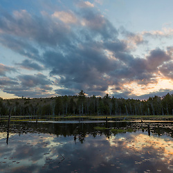 A beaver pond in Barrington, New Hampshire.