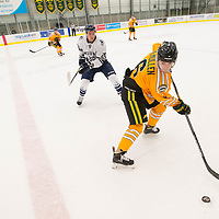 3rd year defence man Devon McMullen (6) of the Regina Cougars in action during the Men's Hockey Home Game on January 20 at Co-operators arena. Credit: Arthur Ward/Arthur Images