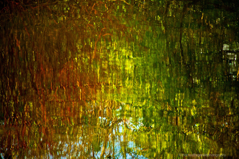 Marley Park, Dublin, Ireland: The colour of Autumn trees cause these beautiful abstract reflections in the gently rippling surface of a lake.
