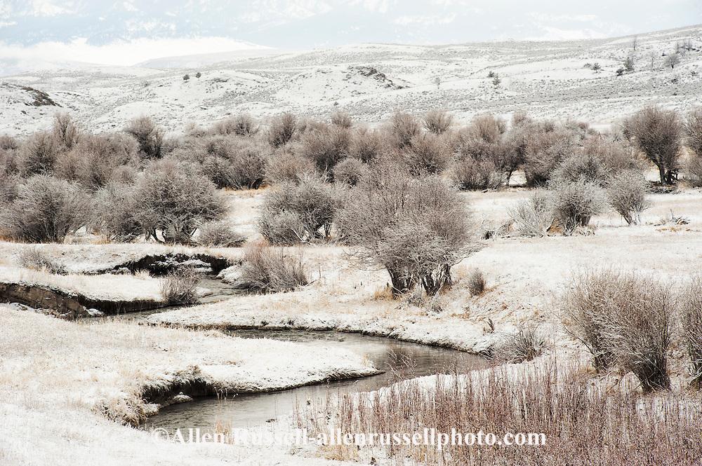 Flathead Creek, northwest of Wilsall, Montana