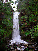 Erskine Falls waterfall, Great Otway national park, Lorne, Victoria, Australia