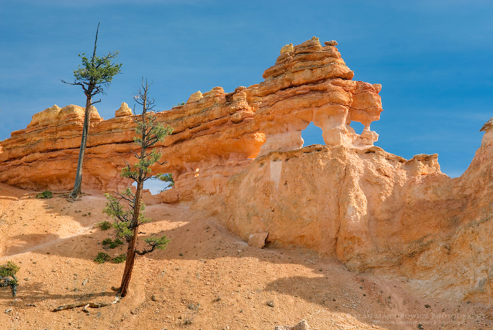 Turret Arch in Water Canyon near Mossy Cave, Bryce Canyon National Park Utah