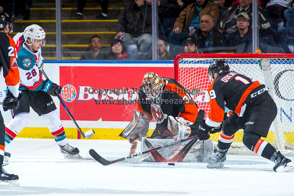 KELOWNA, CANADA - JANUARY 30: Leif Mattson #28 of the Kelowna Rockets takes a shot on the net of Jordan Hollett #31 of the Medicine Hat Tigers on January 30, 2017 at Prospera Place in Kelowna, British Columbia, Canada.  (Photo by Marissa Baecker/Shoot the Breeze)  *** Local Caption ***