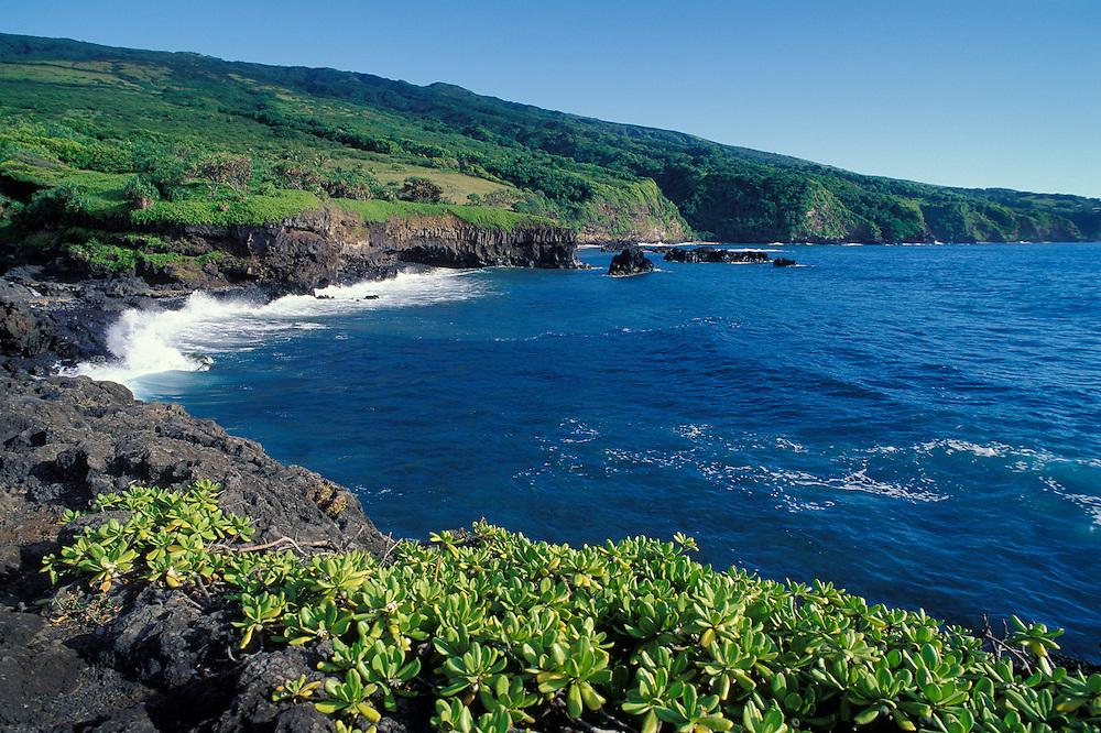 Coastline at Oheo Pools area, Kipahulu District, Haleakala National Park, Maui, Hawaii...