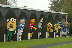 MASCOTS POSE IN STABLE BOXES,John Smiths Mascot Grand National, Huntingdon Racecourse Sunday 5th October 2008