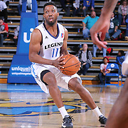 Texas Legends Guard Booker Woodfox (11) attempts a shot in the second half of a NBA D-league regular season basketball game between the Delaware 87ers and the Texas Legends (Dallas Mavericks) Sunday, Jan. 25, 2015 at The Bob Carpenter Sports Convocation Center in Newark, DEL