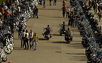Harley Davidson bikes and riders line the lake front Friday Aug. 29, 2003 Milwaukee. Thousands of Harley Davidson bikers from all over the world came to Wisconsin to help celebrate Harley Davidson 100th anniversary.   photo by Darren Hauck