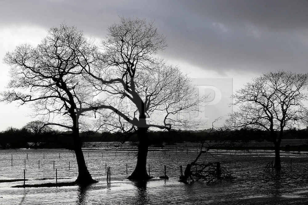 © Licensed to London News Pictures. 06/01/2014, Christchurch, UK. A flooded field at Burton, Christchurch, England , Monday, Jan. 6, 2014. Part of UK continue to be affected by floods and strong wind. Photo credit : Sang Tan/LNP
