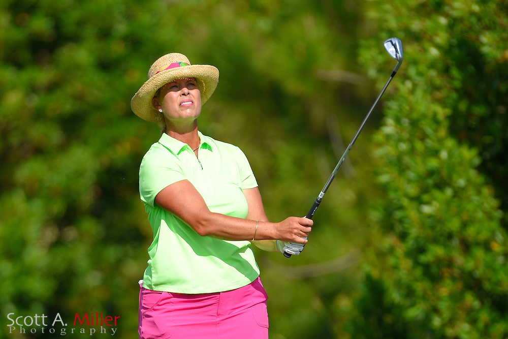 Legend Tour golfer Michelle McGann during the third round of the Symetra Tour's Chico's Patty Berg Memorial on April 18, 2015 in Fort Myers, Florida.<br /> <br /> &copy;2015 Scott A. Miller