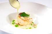 Seared Day Boat Scallop with<br />
