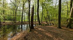 Pano Spanderswoud, 's-Graveland, Wijdemeren, Netherlands
