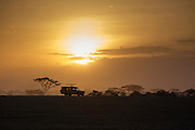 Sunset from a tour vehicle in Tanzania, Africa