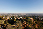 Downtown Los Angeles from the Observatory