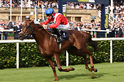 THREAT (1) ridden by Pat Dobbs and trained by Richard Hannon winning The Group 2 Pommery Champagne Stakes over 7f (£75,000)du ing the fourth and final day of the St Leger Festival at Doncaster Racecourse, Doncaster, United Kingdom on 14 September 2019.