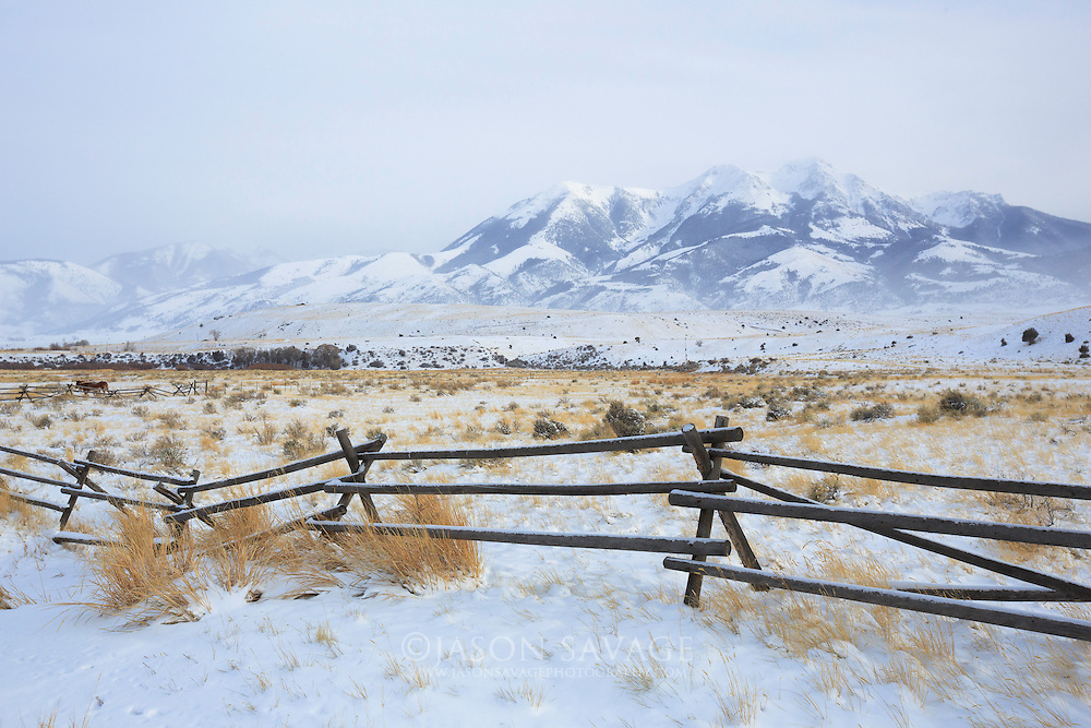 Winter in the Paradise Valley, Montana.