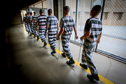 "Inmates from one of Sheriff Joe Arpaio's Maricopa prison are shackled together with 9 feet spacing between each prisoner before being put to work outside the prison. Highly controversial, the chain gangs were reintroduced by then Sheriff Joe Arpaio in 1995. Forced to wear pink underwear, black and white prison outfits and ""paraded"" in shackles along highways and public places while doing hard labor, the chain gang was only one of many controversial punitive actions in the sheriff's bid to be tough on crimes. A staunch republican and media savvy, Joe Arpaio was reelected several times before being replaced in 2017 by Sheriff Paul Perzone."