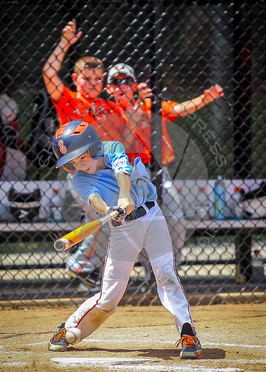 Elmhurst vs. Olney in the 9-11 Illinois State Little League Baseball Championship at Keystone Park in River Forest, Ill. Saturday, Aug. 1, 2015.