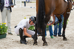 iWathelet Gregory, (BEL), Conrad de Hus<br /> Individual Final Competition round <br /> FEI European Championships - Aachen 2015<br /> © Hippo Foto - Leanjo de Koster<br /> 23/08/15